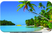 Island Paradise Debit Mini Clutch