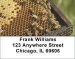 Honey Bees Address Labels