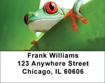 It's A Froggy Frog World Address Labels