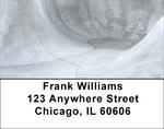 Skateboarding Concrete Address Labels