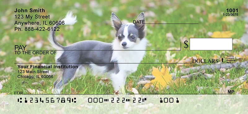 Adorable Chihuahuas Personal Checks