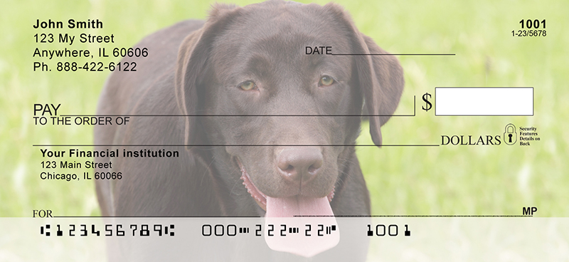 O So Chocolate Labs Personal Checks