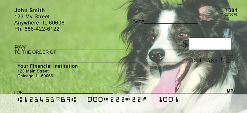 Bouncing Border Collie Personal Checks
