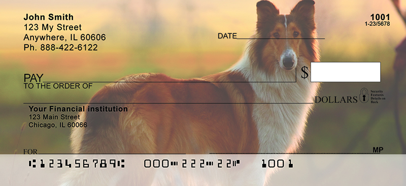Collies Out and About Personal Checks