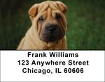 Shar Pei Address Labels