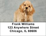 Cocker Spaniel Address Labels - Cocker Puppy Labels