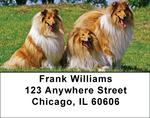 Collies Come home Address Labels