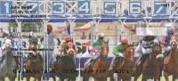 Horse Racing Personal Checks