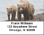 Grizzly Bears in the Wild Address Labels