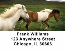 Horses Address Labels
