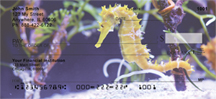 Sea Horses Personal Checks