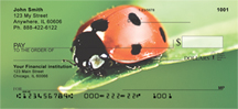 Ladybugs Close and Personal Personal Checks