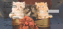 Persian Kittens Personal Checks