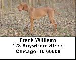 Hungarian Vizsla Address Labels