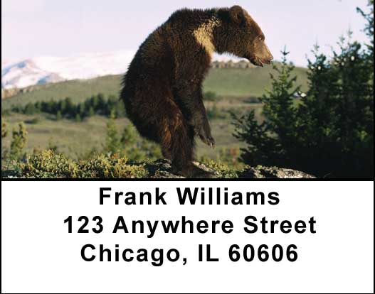 Bears in the Wild Address Labels
