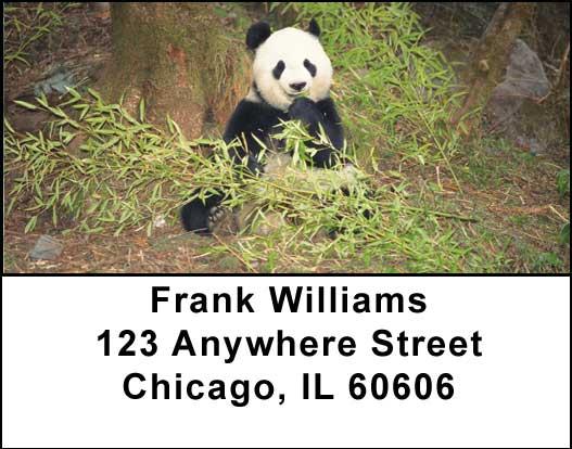 Panda Bears Address Labels