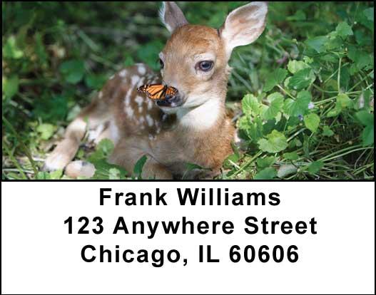 Baby Deer Address Labels