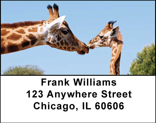 Giraffes Address Labels