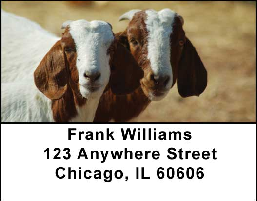 Goats Address Labels