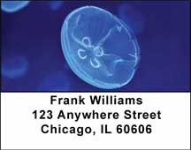 Jellyfish Address Labels $ 5.99