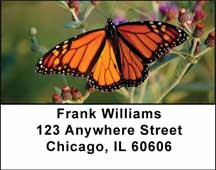 Monarch Butterflies Address Labels