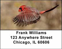 Cardinals Address Labels $ 5.99
