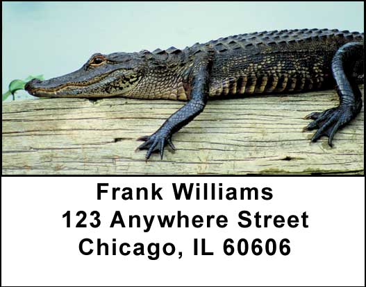Alligators and Crocodiles Address Labels