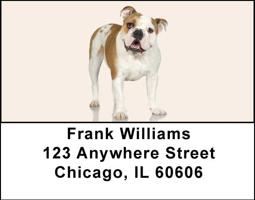 Bulldogs Address Labels