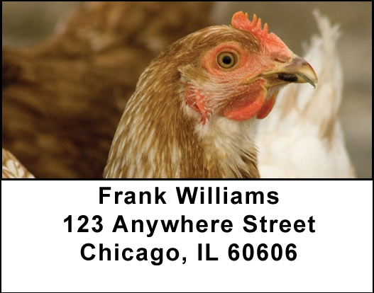Chickens Address Labels