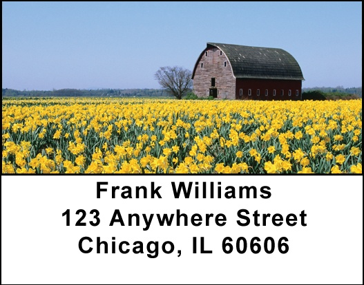 Springtime Barns Address Labels