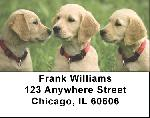 Cute Puppies Address Labels