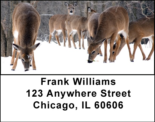 Deer in Winter Address Labels